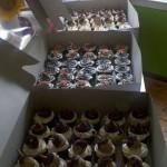 insight cupcakes 2